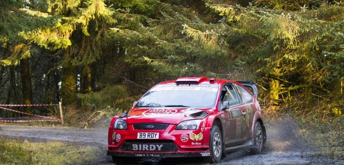 Maximum Points For Bird On Cambrian Rally